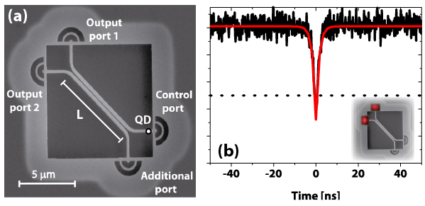 Figure 4 (a) SEM image of directional coupler. L is the interaction length between the waveguides.(b) Normalised cross-correlation function (black line, without background subtraction) from two different output ports (inset). Dotted line indicates 0.5 limit. Red line is the best fit to experimental data yielding g(2)(0) = 0.31±0.03.