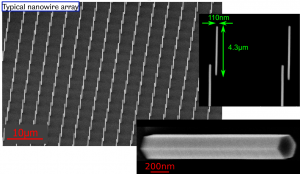 An SEM image of a typical nanowire array, with dimensions of nanowires indicated.