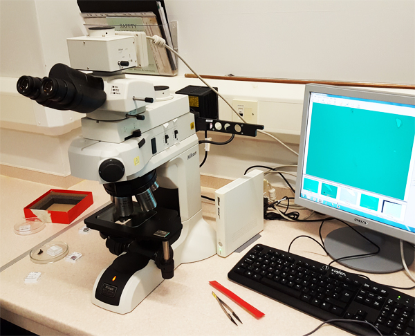 Microscope in the new lab