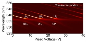Anti-crossing between open cavity modes and QW exciton. The mirror separation decreases with increasing z-piezo voltage.
